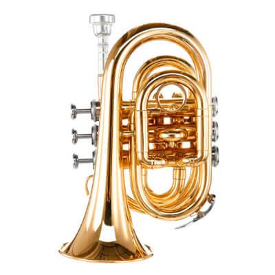 Trompete für Verrückte